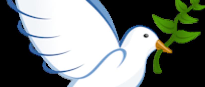 duif_rechts