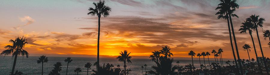 zonsondergang met palmbomen.