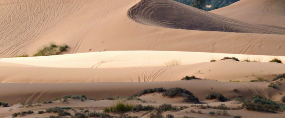 pink-sand-banner-high.png